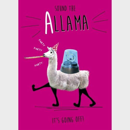 LLama Birthday Any Occasion Greeting Card Sound the Allama Funny Humour Card NEW