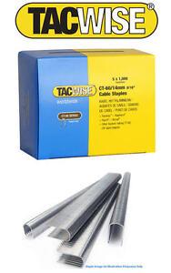 Tacwise 0380 Grapas galvanizadas de tipo 80//4 mm