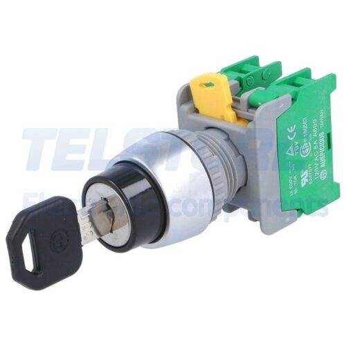 1pcs  Schalter  Drehschalter mit Schlüssel 3-stellig NO x2 22mm