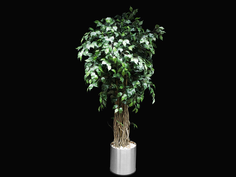 Ficus Benjamini Liane Dekopflanze Kunstbaum 150 cm mit Edelstahl Übertopf