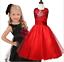 Wedding-Glitter-Sequin-Tulle-Flower-girl-Dress-Toddler-Bridesmaid-Easter-K101 thumbnail 4