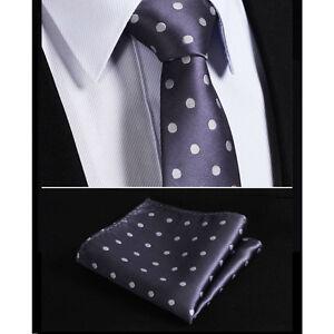 Silver-Grey-White-Polka-Dot-Wedding-Designer-Tie-FREE-Hanky-Set