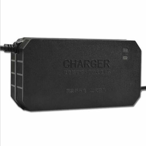 vuC Gozar 48v 2.6a caricabatteria veloce 220v smart per auto moto elettrico