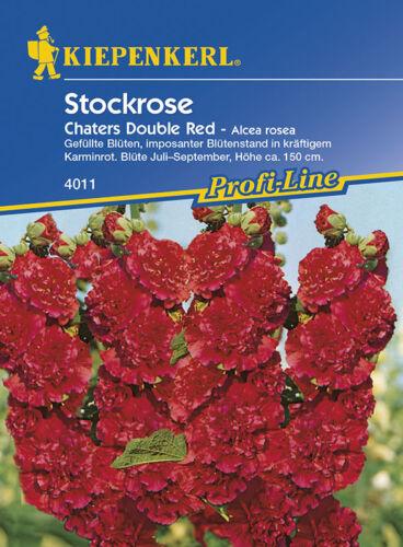 Chaters Double Red Stockrosen MHD 01//21 Alcea Bauerngarten Kiepenkerl 4011