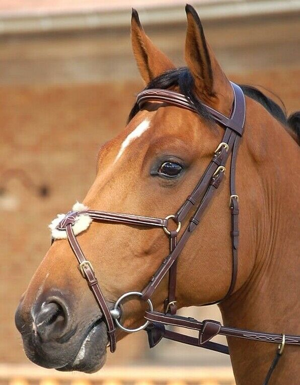 Dy'on Fancy Figure 8 Bridle & Rubber Reins, Full Dimensione