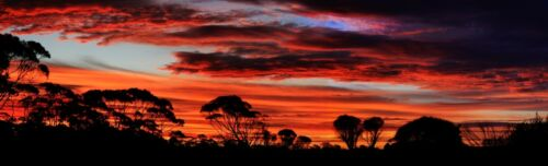 HUGE 1M STUNNING OUTBACK AUSTRALIA SUNSET LANDSCAPE PHOTO ARTWORK PRINT POSTER