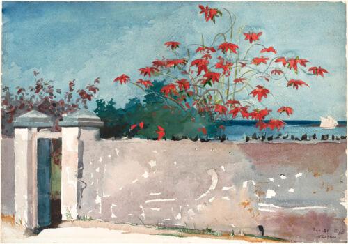 A Wall Winslow Homer Watercolor Reproductions Fine Art Print Nassau