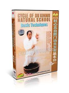 Cycle-of-Du-Xinwu-Natural-School-martial-art-Basic-Technique-by-Du-Feihu-2DVDs