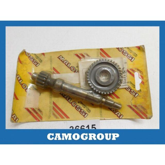 Engranaje Primario Primary Gears Htq Z 16/37 Malossi Piaggio Quartz 677385