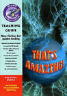 Navigator FWK: That's Amazing Teaching Guide by Pearson Education Limited (Paperback, 2008)