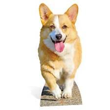 Corgi Dog Lifesized Mini Cardboard Cutout Great for dog lovers and animal events