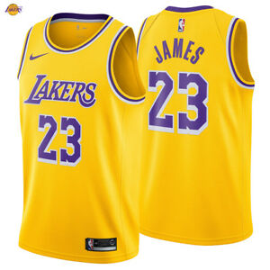 db69523cc144 LeBron James 23 Los Angeles Lakers Nike Swingman Jersey 2018 19 Icon ...