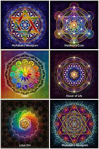 6x-Blume-des-Lebens-Zodiac-Hexagram-Lotus-Om-Metatron-Yoga-Aufkleber-Sticker