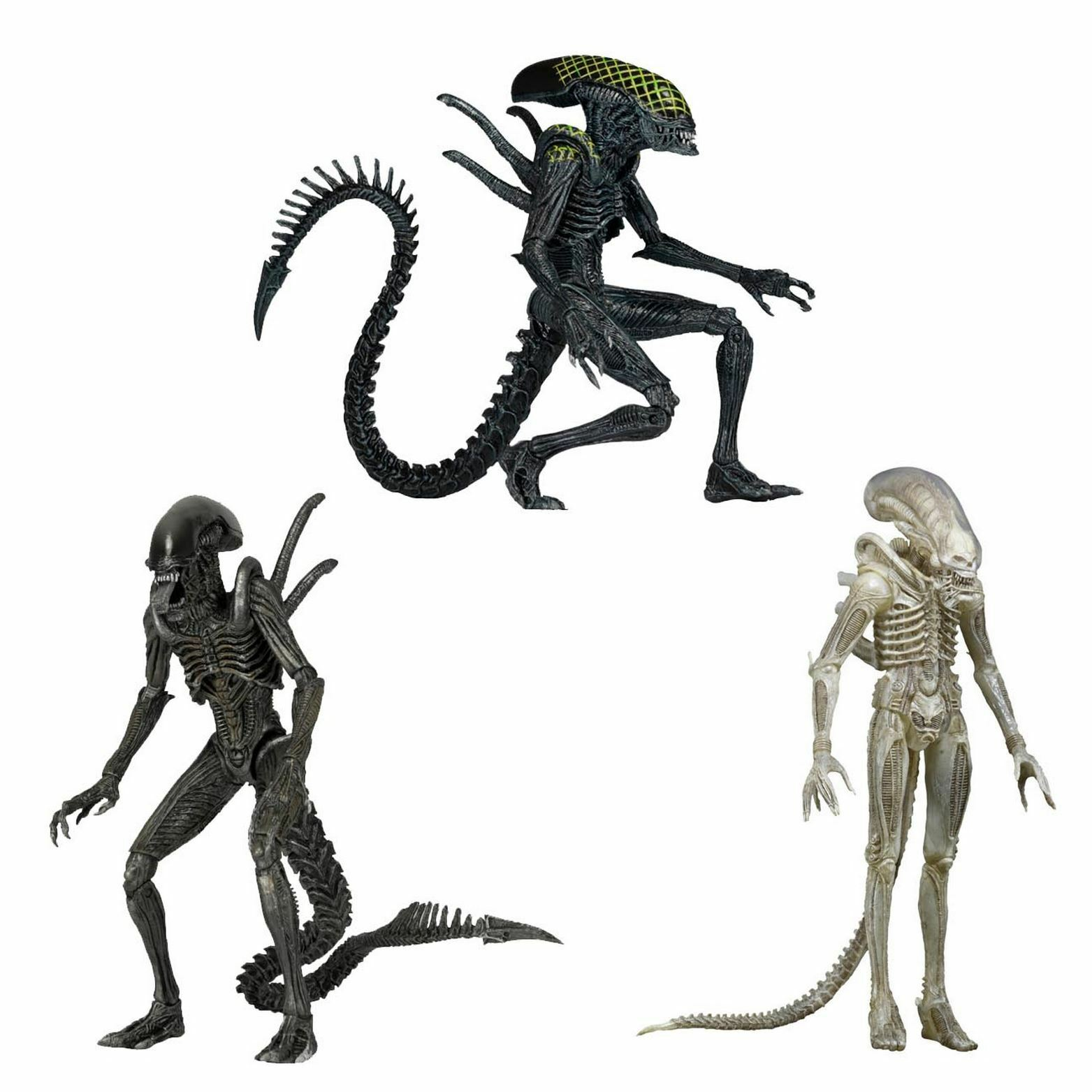 Aliens  - 9  Scale Figures (3 Versions) - Series 7 - Discontinued - NECA