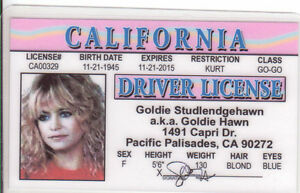 GOLDIE-HAWN-plastic-ID-card-Drivers-License-star-of-Shampoo-Private-Benjamin