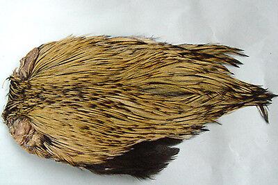 1 x Cou de coq Indien BADGER montage mouche seche cock neck rooster cape hackle