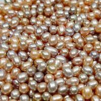 Akoya Japanese Big Nature Pearl Selling LOT 5/10/25/50 pcs