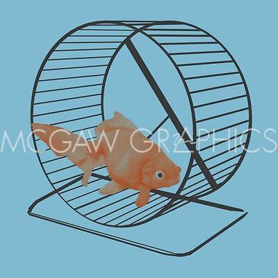 ANIMAL ART PRINT Goldfish on Hamster Wheel Jason Laurits