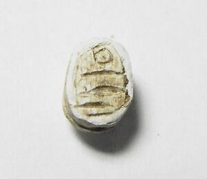 Zurqieh New Kingdom Ancient Egypt Tiny Stone Scarab 1400 B.c abq16