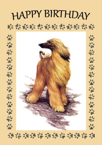 AFGHAN HOUND DOG BIRTHDAY GREETINGS NOTE CARD