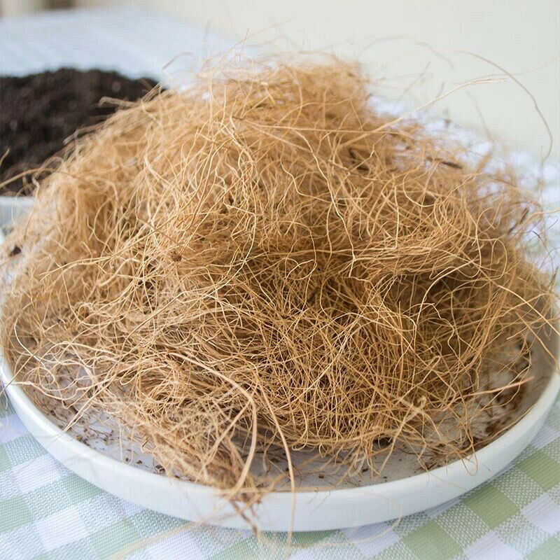 Coconut Husk Fiber Protect Plants Soil Temperature Orchids Crafts FREE Shipping