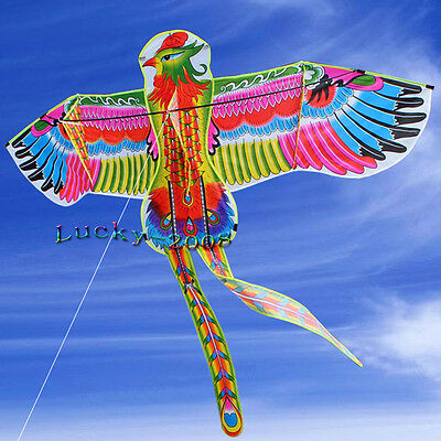 NEW Colorful Phoenix Delta Kite, 74-inch with Flying Line 30m single line Toys
