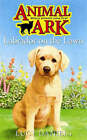 Labrador on the Lawn by Lucy Daniels (Paperback, 2005)