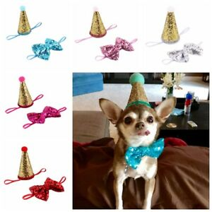 Image Is Loading Birthday Cap With Bowtie For Small Dog Puppy