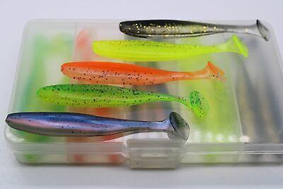 Kunstköder in PVC Box 5 Farben 4 Stück 11cm 20 Köder ** Top ** Gummifische