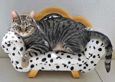 getigerte Katze auf Tüpfelsofa chat Ansichtskarte cat on the couch