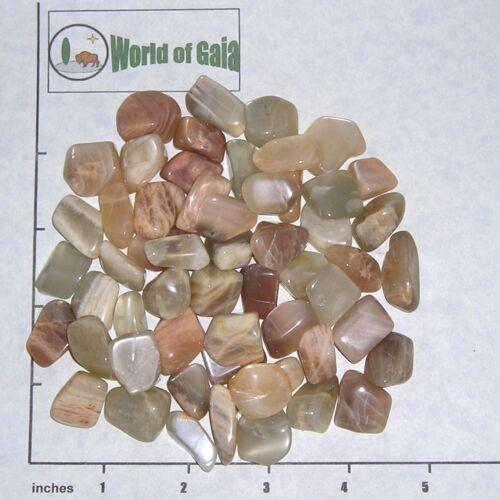 MOONSTONE Earth tones small tumbled 1//2 lb bulk stones 55-65 pkg tan apricote