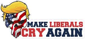 Trump-2020-Punisher-Political-USA-Flag-Laminated-Vinyl-Bumper-Sticker-Decal