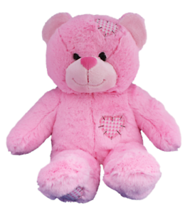 HeartBeat Bear Record your unborn Baby/'s Heartbeat to treasure forever