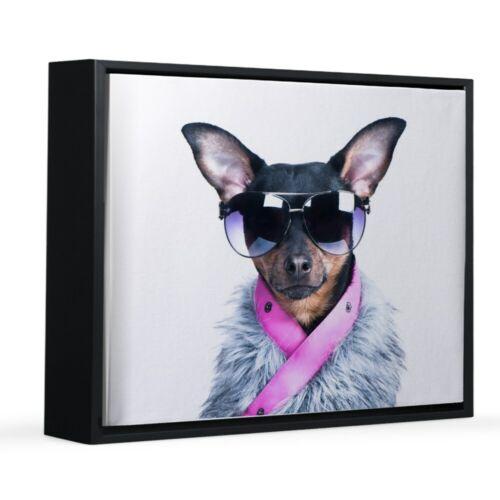 451554840 CafePress Star Chihuahua 8x10 Canvas Print