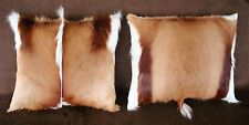 2 SOUTH AFRICAN SPRINGBOK FUR PILLOWS  FREE USA SHIPPING cushion throw taxidermy