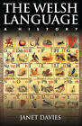 The Welsh Language: A History by Janet Davies (Hardback, 2014)