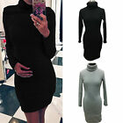 Womens Turtle Neck Jumper Tops Long Sleeve Stretch Bodycon Tunic Dress Sweater