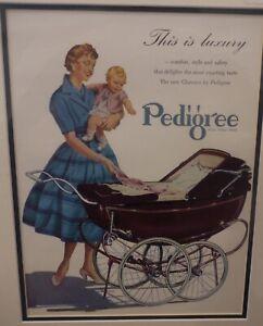 Original-1955-Vintage-baby-matted-advert-Pedigree-Clarence-Baby-Prams