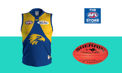 The AFL Store now on eBay!