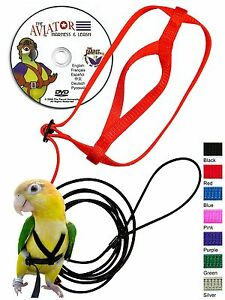 The-AVIATOR-Pet-Bird-Harness-and-Leash