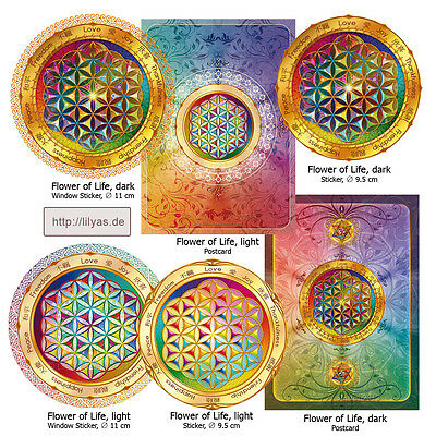 Flower of Life Sticker Window Decal Postcard Sacred Geometry Mandala Esoteric