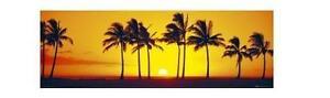 Paesaggi landscapes türposter doorposter TRAMONTO HAWAII Sunset