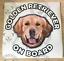 Golden-Retriever-Sticker-Golden-Retriever-Car-Sticker-Window-Decal thumbnail 5