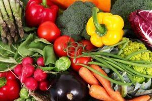 24 Vegetable Garden Varieties Pack! Prepper seed Vault - Free shipping