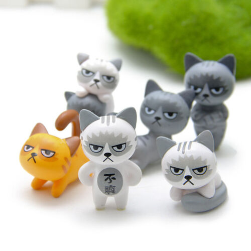 """Set of 6 Angry Cats in Different Posts 1.5/"""" Freestanding Funny Facial Expression"""