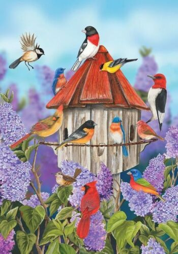 #31 BIRDS et lilas fleurs grande maison Drapeau 28X40 Bannière Summer Birdhouse