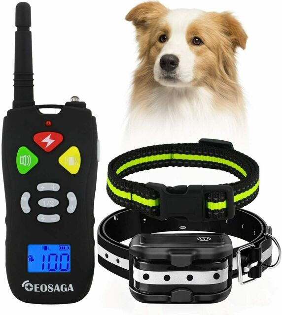 Rechargeable Dog Shock Collar with Remote IP67 Waterproof Shock Collar w//3 Training Modes 1000ft Remote Range Dog Collar Dimunt Dog Training Collar Vibration and Shock Beep