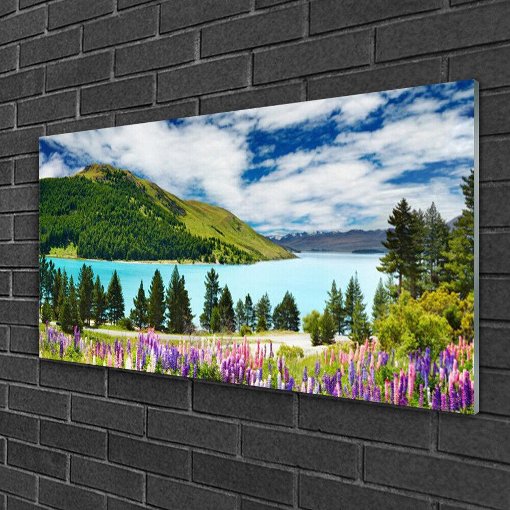 Tableau sur verre Image Impression 100x50 Paysage Montagnes Lac Prairie Forêt
