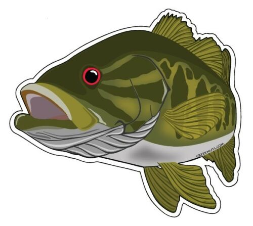"""Fishing Bumper Stickers SMALLMOUTH BASS 5/"""" x 4 1//4/"""" decals fly fishing smallies"""