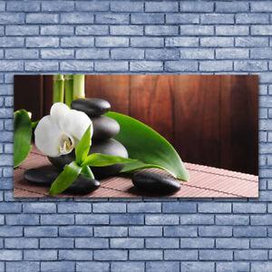 Glasbilder Wandbild Druck auf Glas 140x70 Blumen Pflanzen